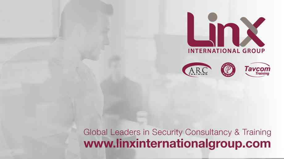The Linx International Group